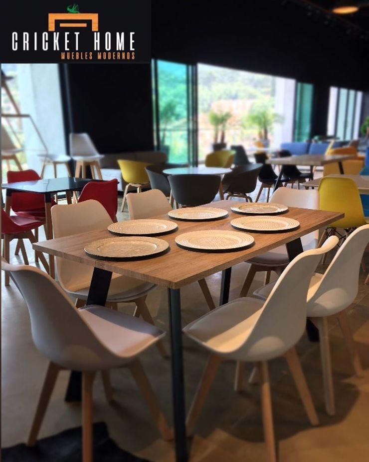 Criket Home - Tienda de muebles modernos, salas y comedores en el Centro Comercial City Plaza de Envigado, Antioquia 2