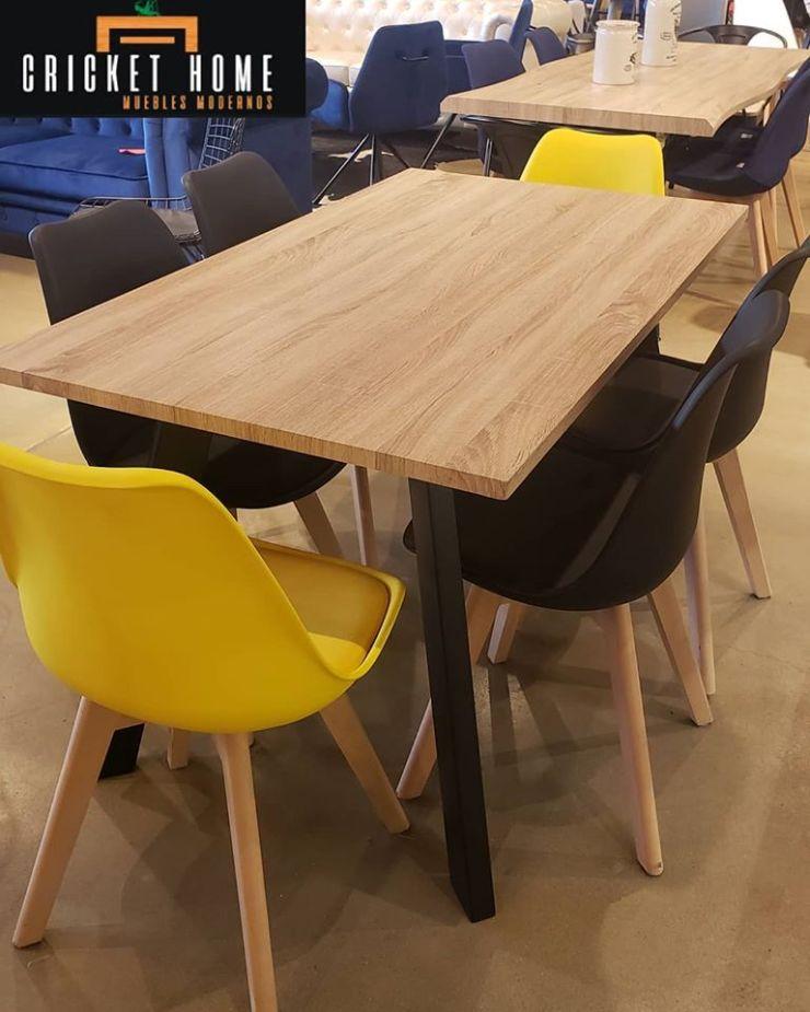 Criket Home - Tienda de muebles modernos, salas y comedores en el Centro Comercial City Plaza de Envigado, Antioquia 3