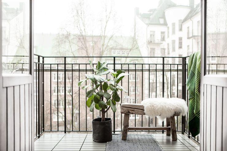 Balcón pequeño con Ficus Lyrata