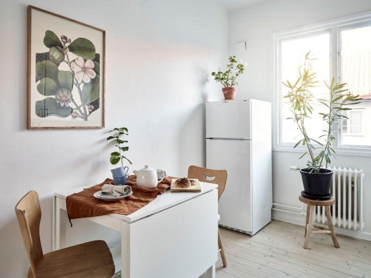 Las plantas en la cocina aportan vida y color rompiendo con la monotonía del blanco